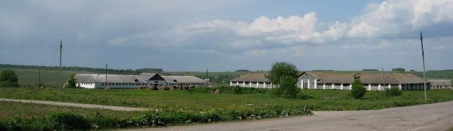 монастырское подворье конный завод
